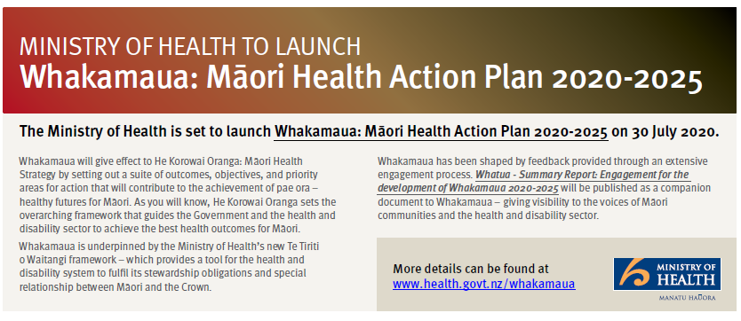 https://www.health.govt.nz/our-work/populations/maori-health/whakamaua-maori-health-action-plan-2020-2025